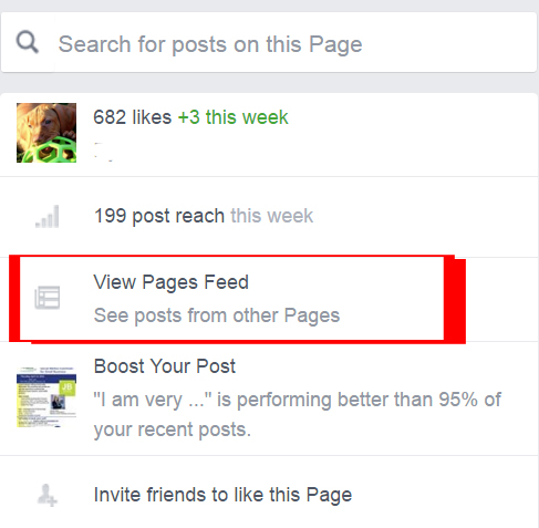 View Pages Feed